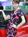 斯柯达展台上的美女车模