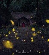 坚果印象作品《夜精灵》