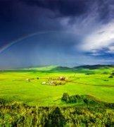 爱乐无忧作品《彩虹家园》