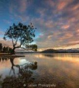 詹姆斯摄影作品《孤树倒影 Lone Tree》