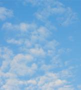南墨笙:碧海蓝天 顶级意境艺术图片欣赏 清了战